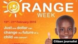 Le Zimbabwe participe à la journée internationale du Cancer de l'Enfant, qui est marquée le 15 février chaque année, en organisant le Kidzcan Orange Week.