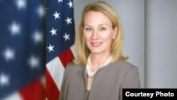 الیس ویلز، معاون وزارت خارجۀ امریکا در امور جنوب آسیا است