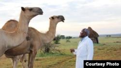 African Camel Health Study