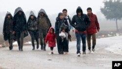 2015年10月19日巴尔干半岛: 塞尔维亚和克罗地亚边界线附近的移民