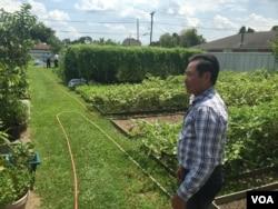 Ông Đỗ Quang Trường đứng trong mảnh vườn to rộng sau nhà ông, New Orleans, Louisiana, ngày 29 tháng 8, 2015.