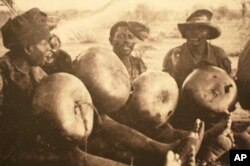 Drummers in Nyasaland, now Malawi, in the mid 1930s, recorded and photographed by Hugh Tracey