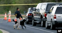 An agent the Bureau of Alcohol, Tobacco, Firearms and Explosives works with his dog near the site of Sunday's explosion, Monday, March 19, 2018, in Austin, Texas.