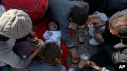 Des migrants tentent de s'enregistrer en Serbie, le 16 novembre 2015.