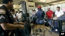 美國機場派警犬加強巡邏 (資料圖片)