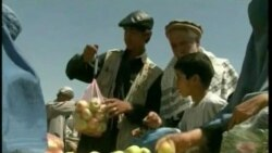 Afghan Security Uncertain Despite Gains in Agriculture