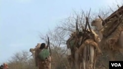 Bencana kekeringan dan kelaparan di Somalia telah meluas ke enam wilayah, termasuk wilayah yang sebelumnya merupakan penghasil pangan.