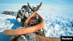 Сибирь. Вечная мерзлота (архивноефото)