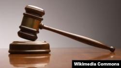 弗格森案进入司法程序