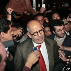 巴拉迪在开罗机场答记者问,支持示威