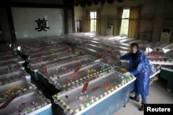 A mortuary worker prepares coffins after a cruise ship sank on the Yangtze River in Jianli, Hubei province, China, June 3, 2015.