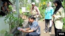 Pelepasan nyamuk yang mengandung bakteri wolbachia oleh tim peneliti UGM dan warga di Yogyakarta Januari lalu (foto: VOA/Nurhadi Sucahyo).
