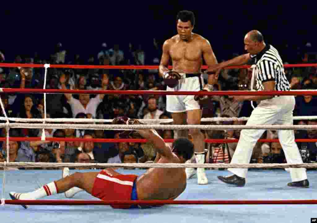 Muhammad Ali memperhatikan George Foreman yang roboh saat pertandingan di Kinshasa, Zaire, 30 Oktober 1974. (AP Photo)