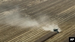 In this Aug. 16, 2012 file photo, dust is blown from behind a combine harvesting corn in a field near Coy, Ark.