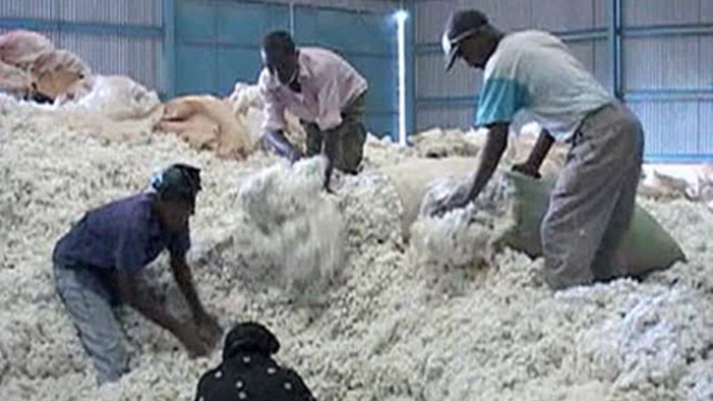 Issues Slow Recovery of Kenya's Cotton Industry