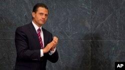 Enrique Peña Nieto aseguró que también quiere establecer espacios para atender a los migrantes menores no acompañados que buscan llegar a EE.UU.