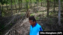 A villager walks on land they fear will be affected by Asia Pulp & Paper expansion in West Bangka, Indonesia. The pulp and paper company part of the Indonesian conglomerate Sinarmas denies it controls a plantation company it wants as a supplier.
