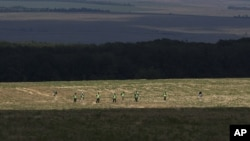 2014年8月3日澳大利亚和荷兰专家在坠机现场