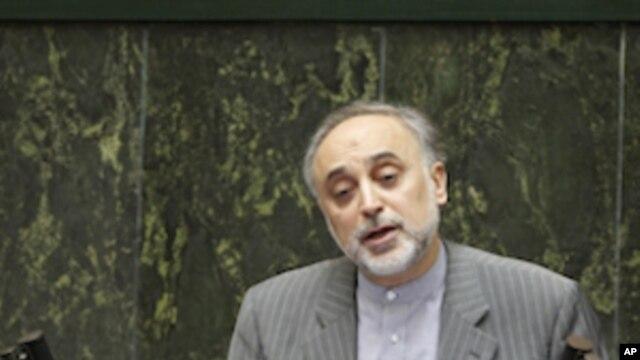 Iran's Foreign Minister Ali Akbar Salehi (file photo)