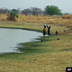 Residents draw and use water from a pond that also is used by their livestock and other animals, in Yola, Adamawa state, Nigeria, February 24, 2012.