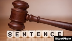 Gavel Resting on the Word Sentence