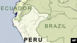 พืชพื้นเมืองของเปรู อาจเป็นความหวังสำหรับการผลิตยารักษาโรคต่างๆ