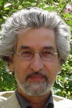 مهران براتی: ایران به خاطر پایگاه های نظام غرب در بحرین ، ترجیح می دهد همچنان از بحران در این کشور حمایت کند