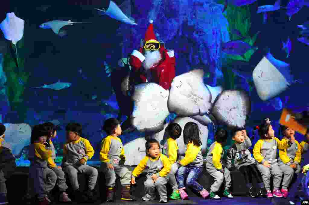 A South Korean diver wearing a Santa Claus outfit swims with fish in a tank during a Christmas event at the Lotte World Aquarium in Seoul.