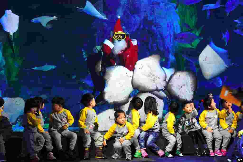 អ្នកមុជទឹកជនជាតិកូរ៉េខាងត្បូងម្នាក់ដែលស្លៀកពាក់ជា Santa Claus ហែលទឹកជាមួយនឹងត្រីនៅក្នុងអាងមួយក្នុងព្រឹត្តិការណ៍បុណ្យណូអែលមួយនៅ Lotte World Aquarium ក្រុងសេអ៊ូល។