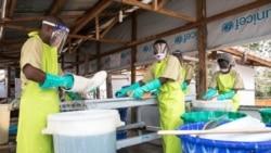 Deux premiers cas Ebola confirmés dans le Sud-Kivu