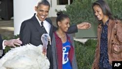 اوباما، همراه با دو دخترش، یک بوقلمون را به عنوان نماد بخشش ریاست جمهوری آزاد کرد.