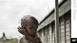 Child Malnutrition Growing