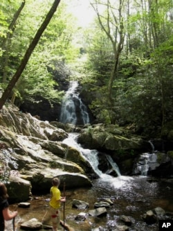 A boy plays at the bottom of Spruce Flats Falls in the Great Smoky Mountains National Park.