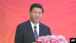 Ο Αντιπρόεδρος της Κίνας, Ζι Ζίνπινγκ