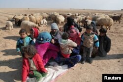 FILE - Internally displaced Syrians who fled Raqqa city rest near sheep in northern Raqqa province, Syria, Feb. 6, 2017.