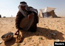 A man sells Terfeziaceae, or desert truffles, in a desert south of Samawa, 270 km south of Baghdad February 10, 2013. Truffles are expensive at $45 per kilogram, and are considered a delicacy in Iraq. (Reuters Photo/Mohammed Ameen)