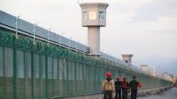 歐洲議會強烈譴責中國強迫勞動,呼籲結束對穆斯林大規模拘禁