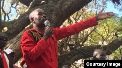Nelson Chamisa At MDC Alliance Protest Harare