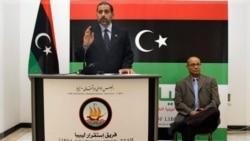 «عارف علی نایض» عضو شورای ملی انتقالی