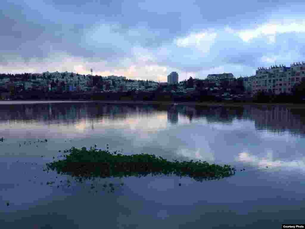 Lake at Gazelle Valley Park, April 8, 2015. (Amir Balaban)