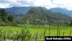 Kawasan pertanian di pegunungan Aceh (foto: dok).