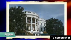 VOA连线(尼亚):第一夫人下令移除白宫两百年历史老树