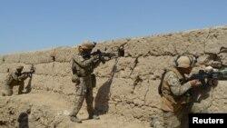 مارون وائن کے بقول صدر ٹرمپ طالبان کے ساتھ کسی نتیجے پر پہنچنے کے خواہش مند تھے۔ (فائل فوٹو)