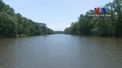 Washington'da Balıkçılık ve Teknecilik Haftası
