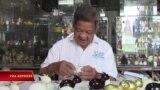 Ông giáo già và sản phẩm thủ công từ vỏ trứng trong mùa Covid