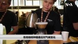 各地咖啡种植者应对气候变化