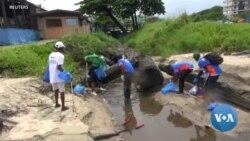 Des volontaires nettoient les plages polluées