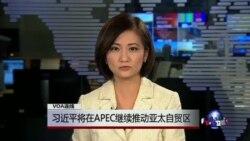 VOA连线:习近平将在APEC继续推动亚太自贸区