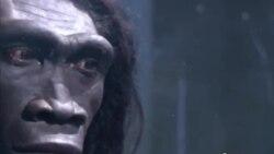 2% неандертальця кожному!