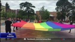 Tirana në Ditën Ndërkombëtare kundër Homofobisë, me anketa dhe tubime proteste